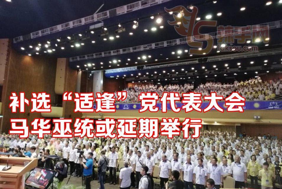 """补选""""适逢""""巫统及马华的党代表大会!"""