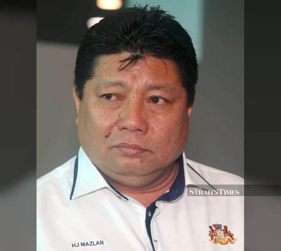 Tanjung Piai by-election: Bersatu to decide on candidate on Friday