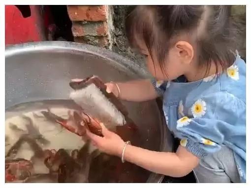 """""""霸气小萝莉""""专业洗龙虾火了,真所谓是一顿""""操作""""勐如虎"""