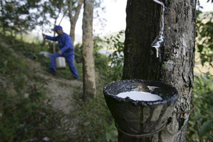 MREPC to roll out new incentive for rubber product industry