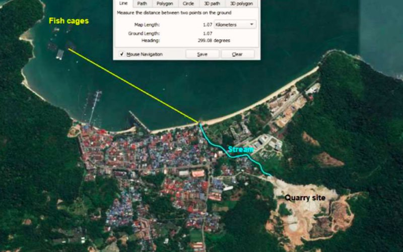 Penang group says company getting away with land clearing despite stop-work orders