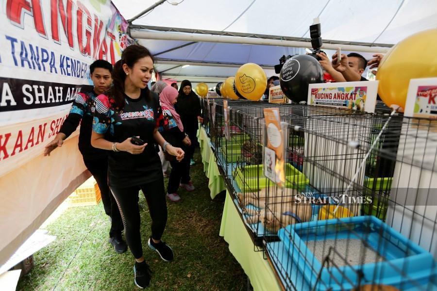 Selangor Tengku Permaisuri upset over rough treatment on stray dog