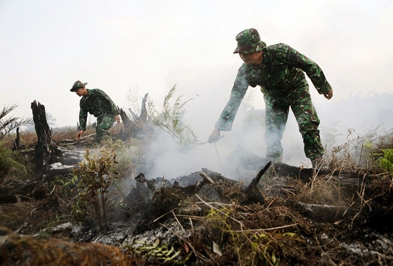 Air quality in West Sumatra decreases as haze spreads to the area