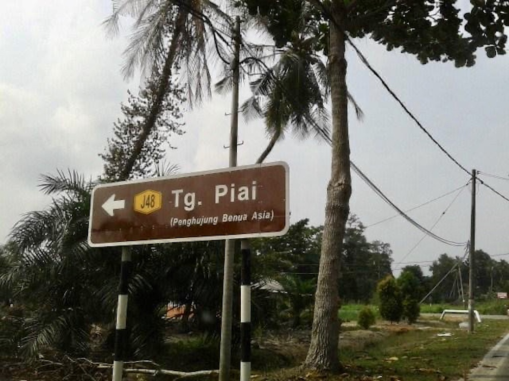 91pc turnout of early voters for Tanjung Piai by-election