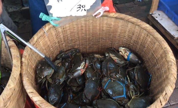 """去青岛吃海鲜,买9只""""大青蟹"""",花50元,掰开后:敢卖这个价?"""