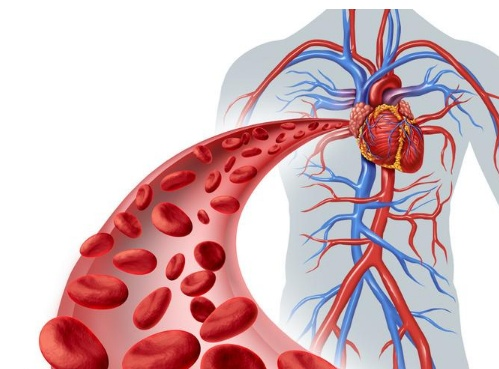 冬季心血管疾病高发,心脏医生温馨提醒:做好这几点,心脏更稳定