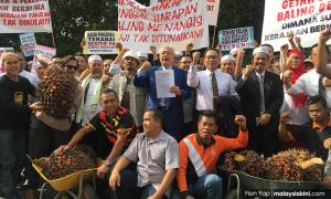 Felda settlers reminisce good times with BN at protest outside Parliament