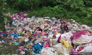 Jungle used as dumpsite for years, complaints to council 'pushed' aside