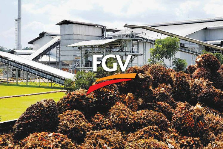 RHB IB ups target price for FGV to RM1.65, expects better earnings from higher CPO prices