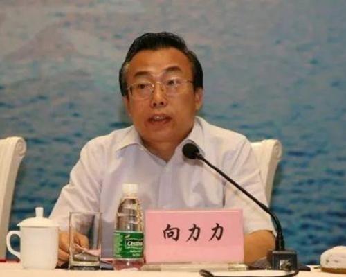 涉以职权受贿 湖南省人大副主任向力力被起诉