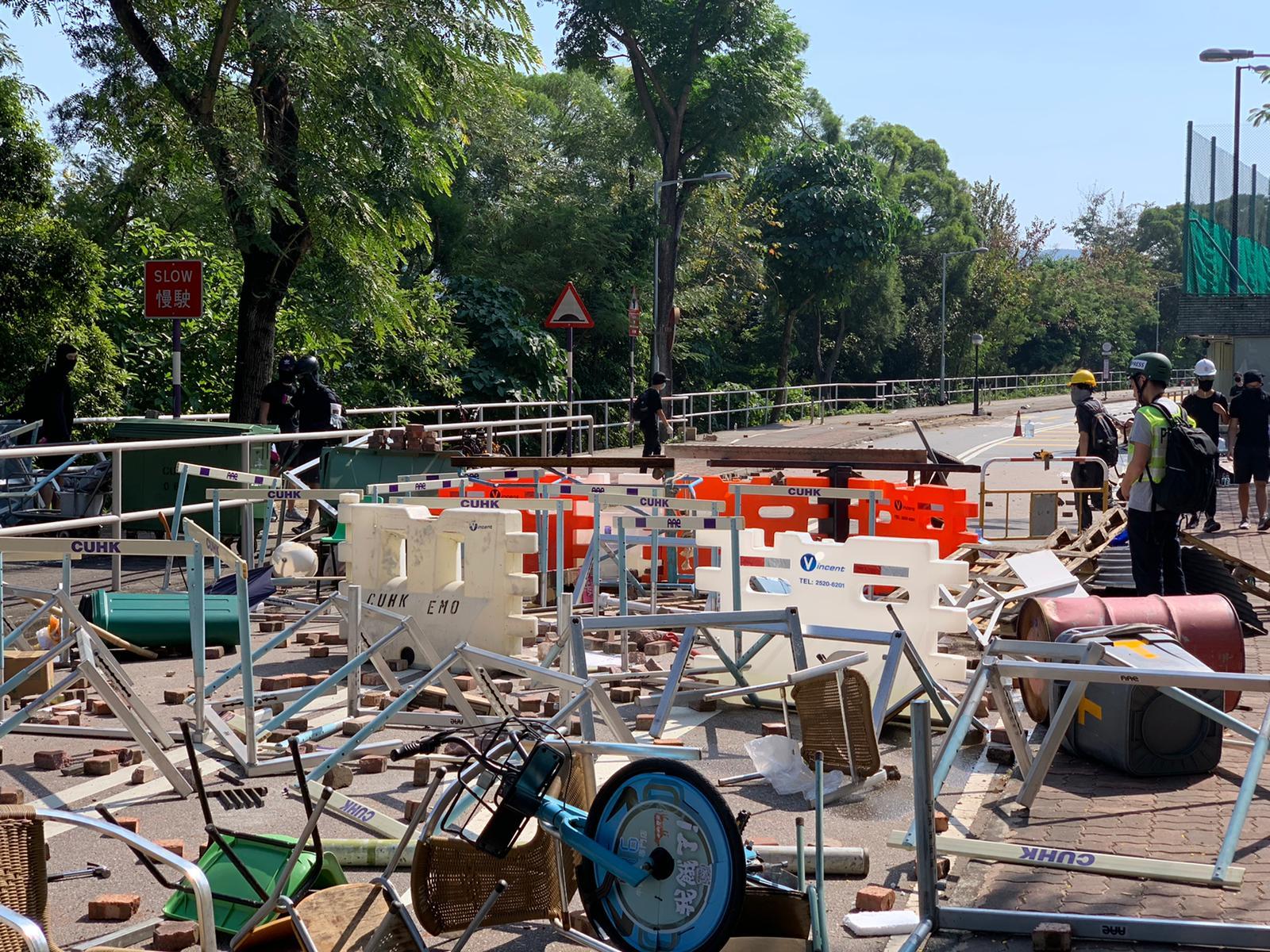 【大三罢】锯棕榈树堵路 吐露港公路受阻科学园路一度开通