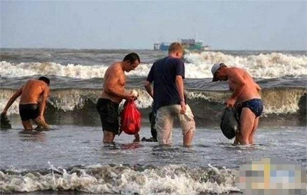 一夜暴风过后沙滩上堆满了海鲜,正等着中国厨师拿大麻袋赶去!