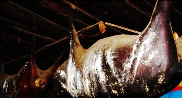 四川扎坝一头猪悬挂房梁30年,臭气熏天,有人出价56万都不卖!