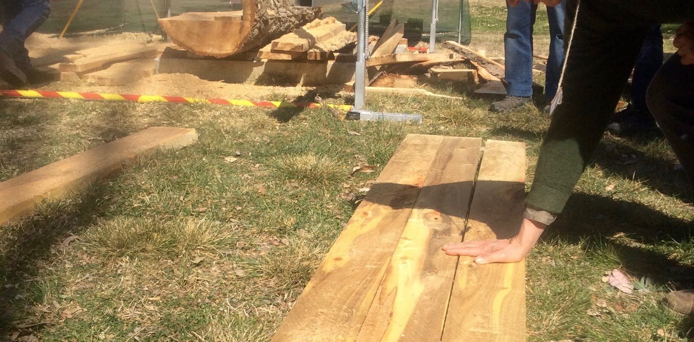 When a tree dies, don't waste your breath: Rescue the wood to honor its memory