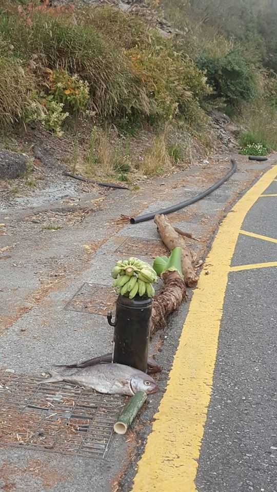 连假上武岭跑山!沿途见「2串香蕉+2条鱼」摆出奇特阵法 , 网友看完急劝「別碰快逃」:会被缠上的!