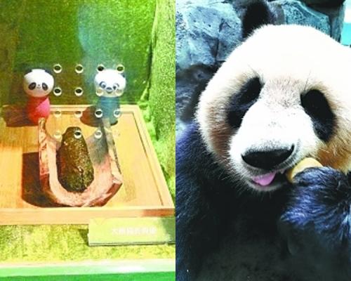 不臭还有竹香?武汉动物园展熊猫粪便供游客闻