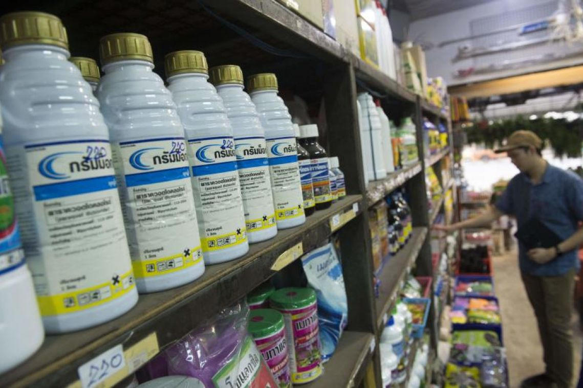 Thailand postpones Dec 1 ban on two toxic farming chemicals following protests