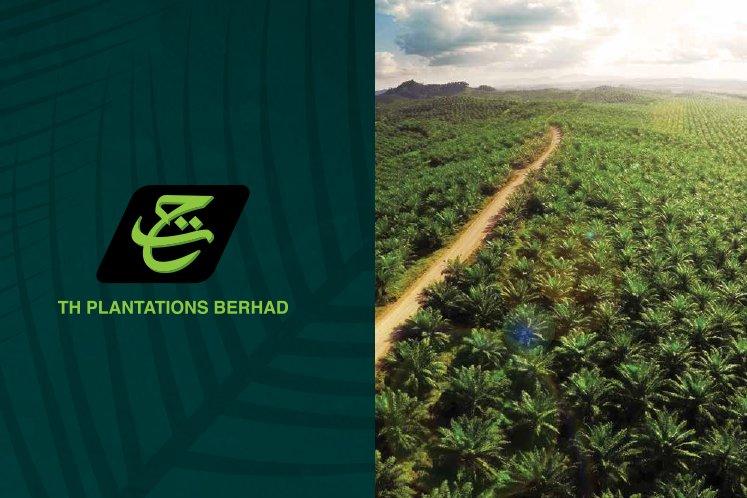 TH Plantations 3Q net loss up 60% on impairment losses