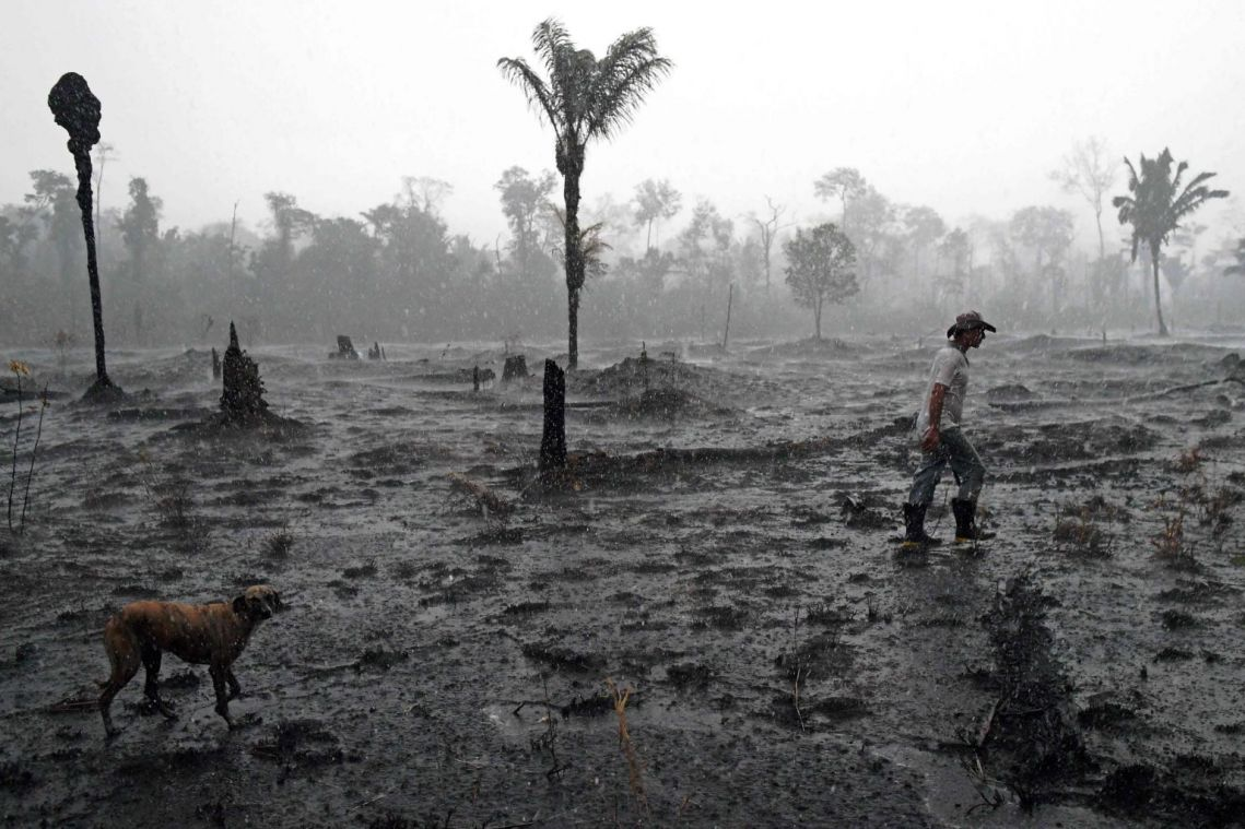 Planet tipping towards global climate disaster, scientists warn