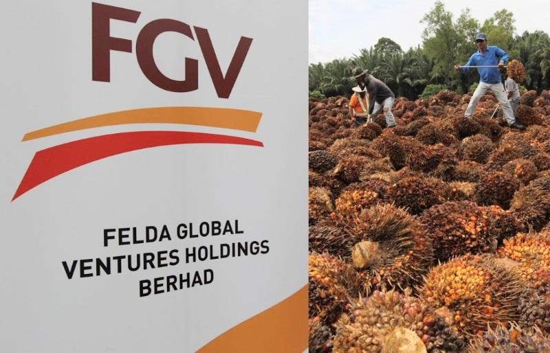 减值降低 营运改善‧FGV第三季净亏收窄至2.6亿