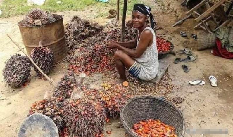 朋友拍的非洲集市的照片,网友直呼:原谅我没见过世面