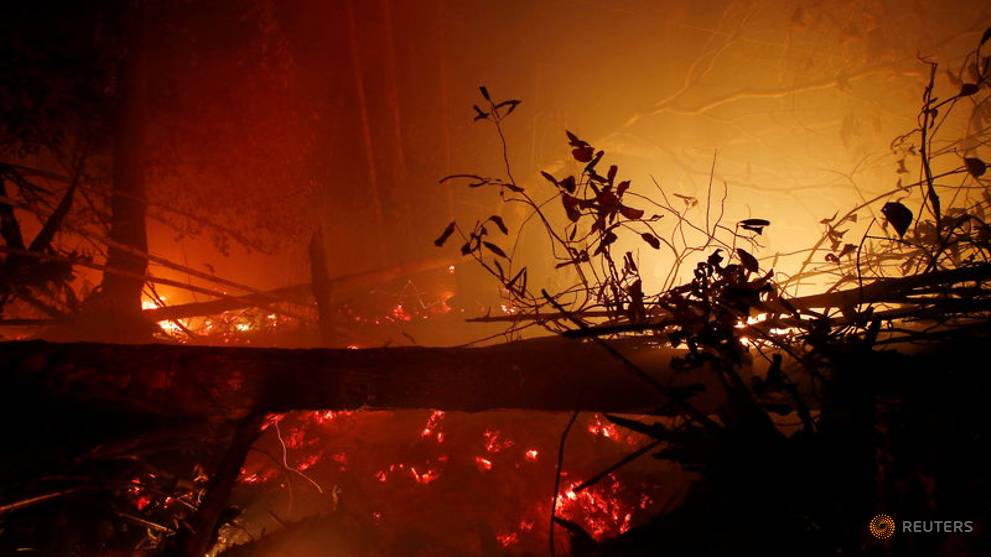 Indonesian fires burnt 1.6 million hectares of land this year: Researchers