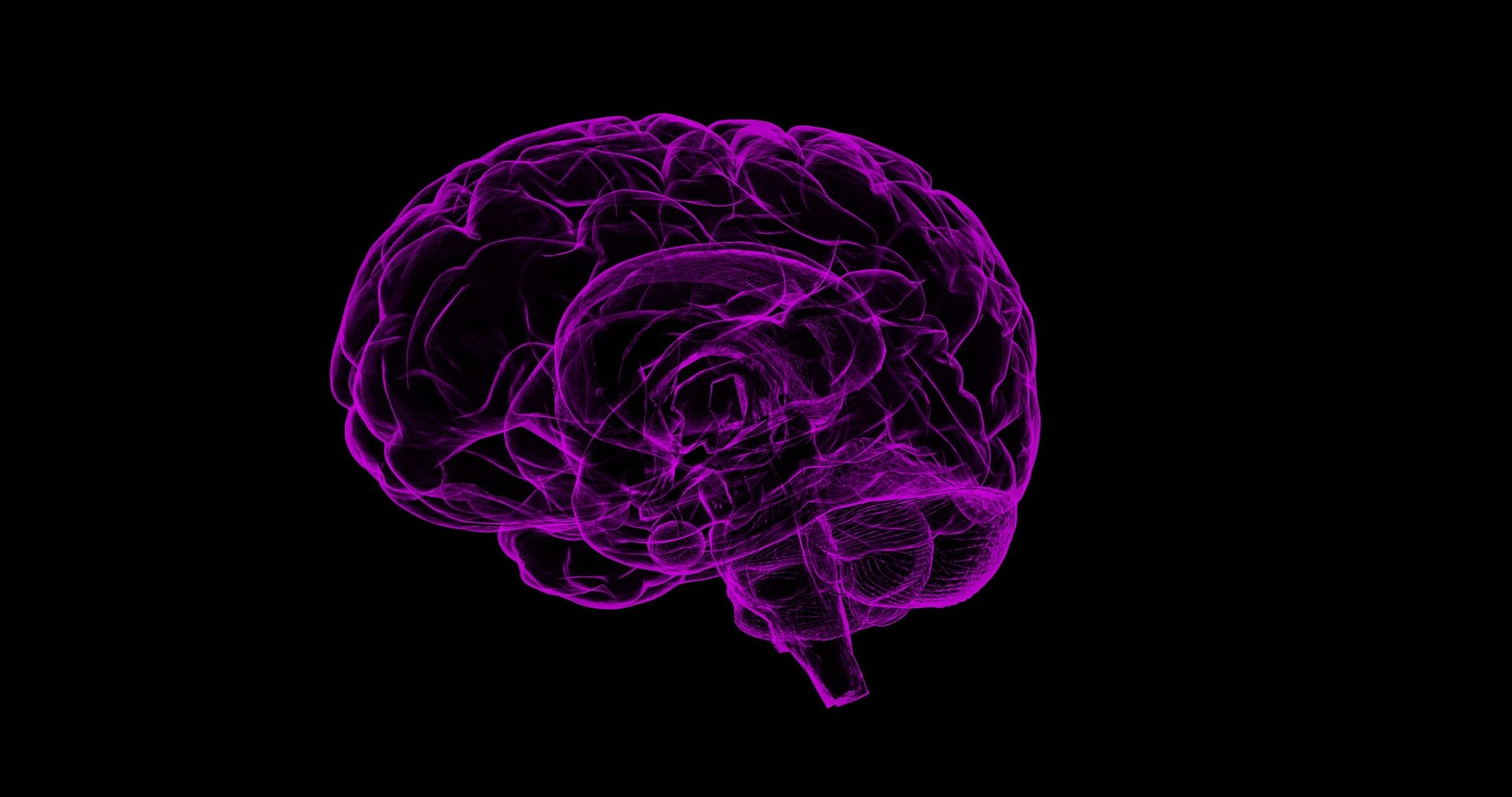 Mapping the relay networks of our brain