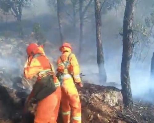 佛山山火延烧逾30小时 5公里内一度被浓烟笼罩