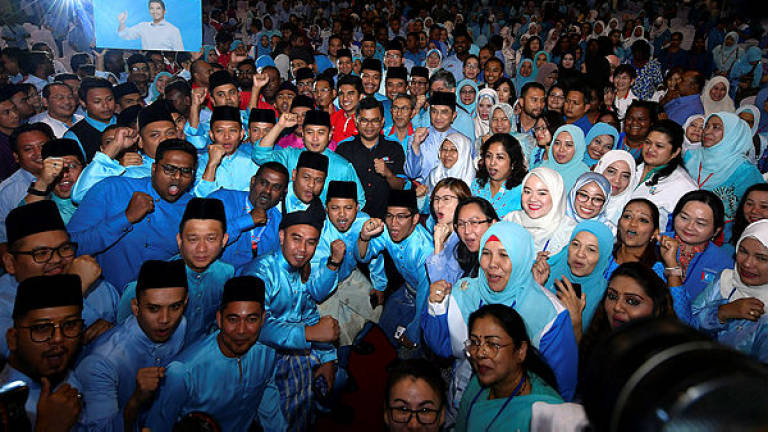 PKR Youth want party to focus on maintatining discipline and party image