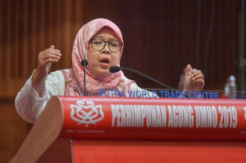 Opposition needs Shadow Cabinet, says Umno delegate