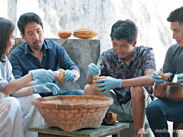The chocolate-loving couple who revived Thailand's cacao-growing industry