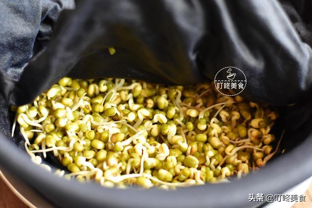 想吃绿豆芽不用买了,自己发特简单,七天就能吃,安全健康无添加