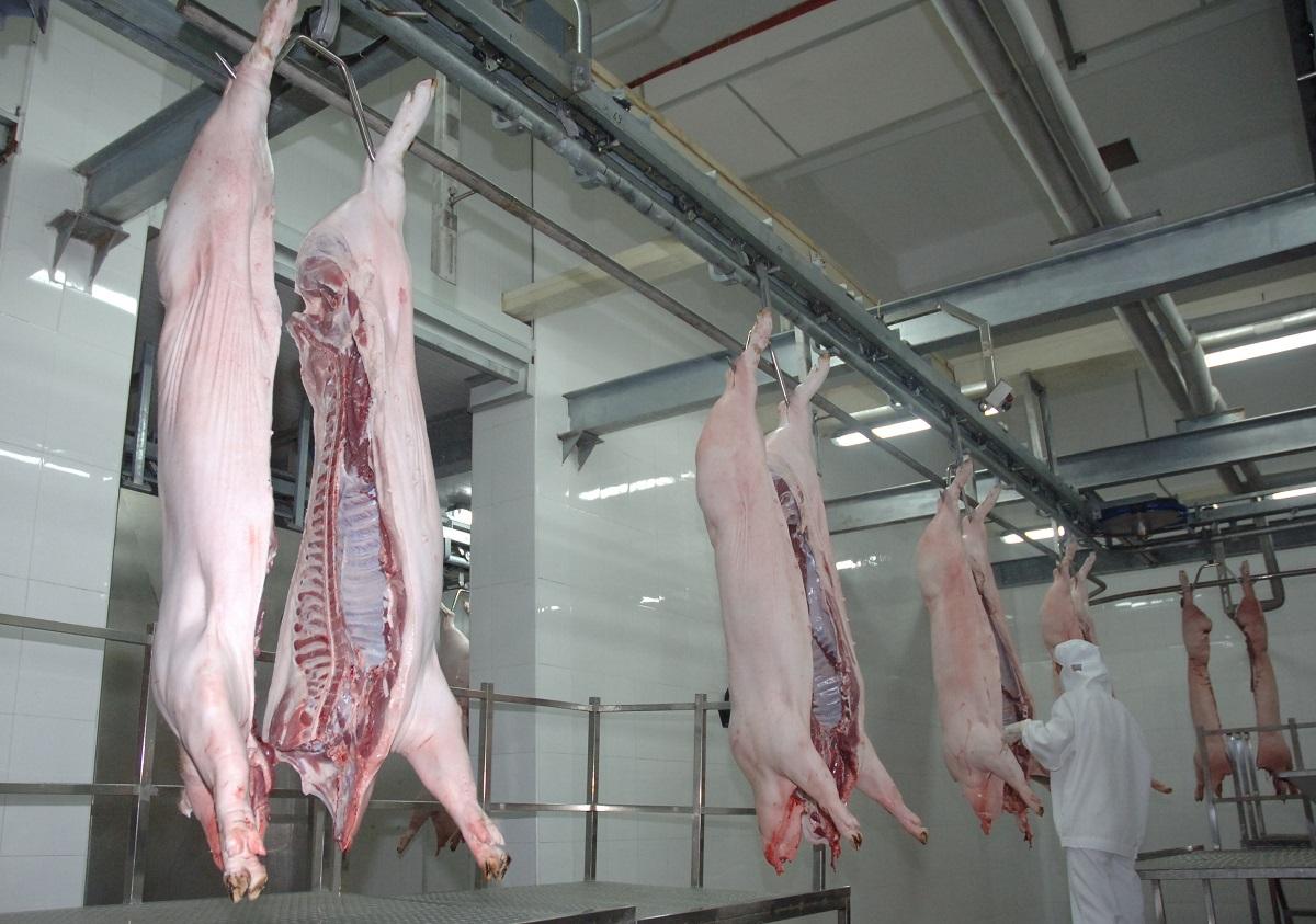 食安中心指越南肉厂曾僞造卫生证明书出口冰鲜猪肉来港