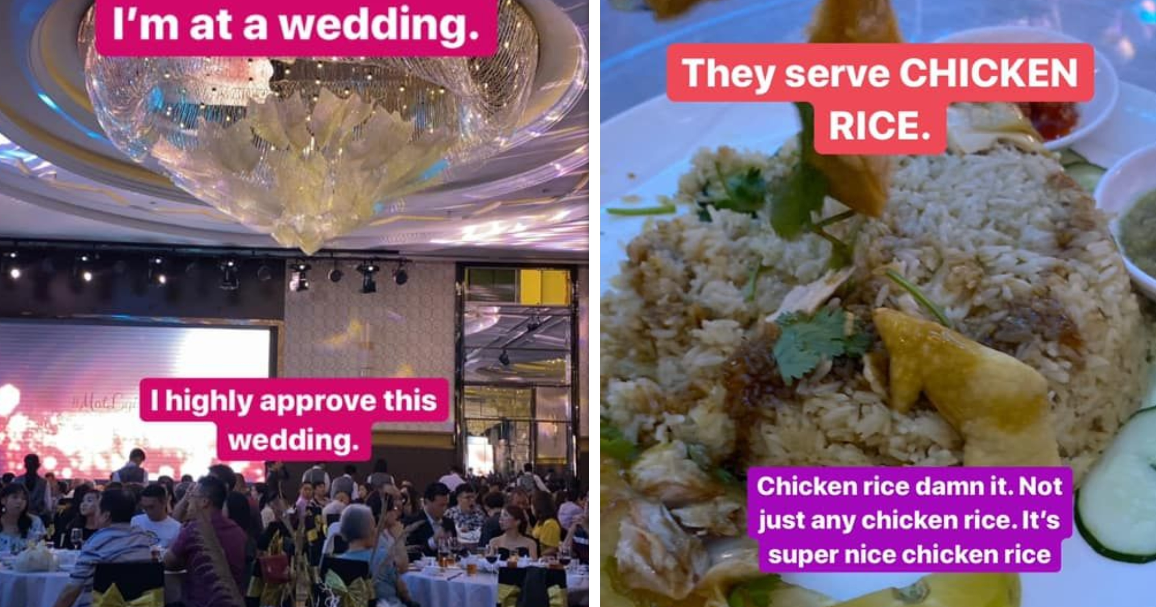 Grand wedding banquet in M'sia serves chicken rice, guest gives it 11 out of 10 rating