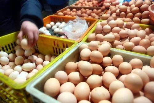 吃了四十几年的鸡蛋,今天才晓得白壳和红壳的区别,可别再买错了