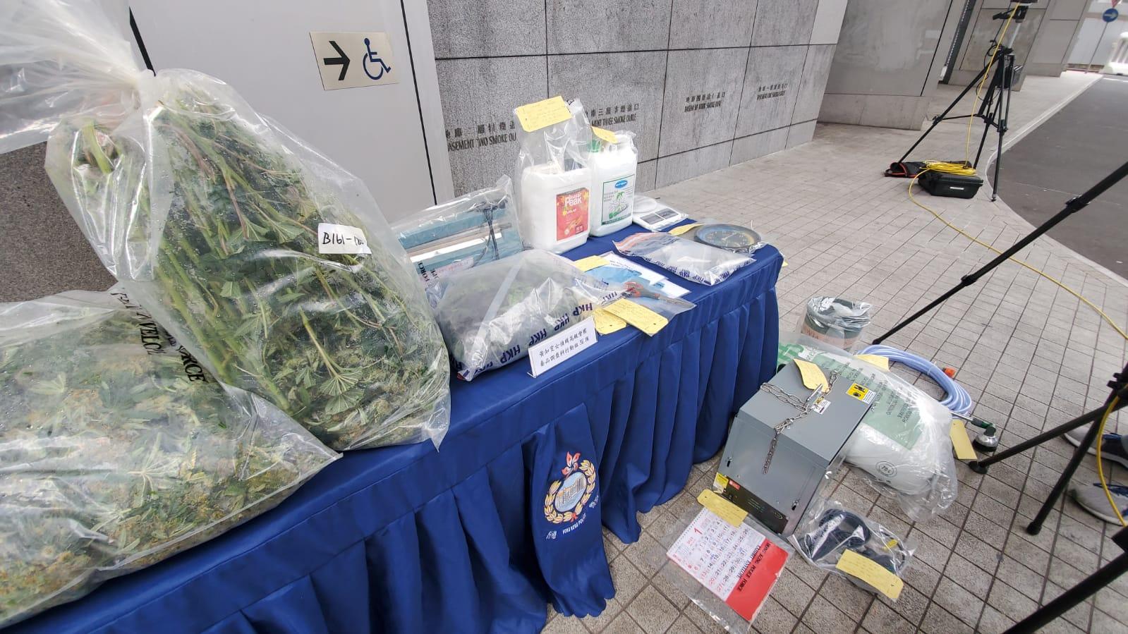 警破两大麻种植场检近3000万元大麻 4男被捕