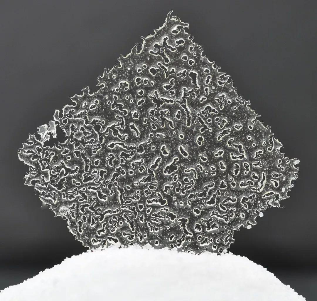 烘焙圈子:珊瑚片的做法~太迷人,装饰食物美得不可方物!