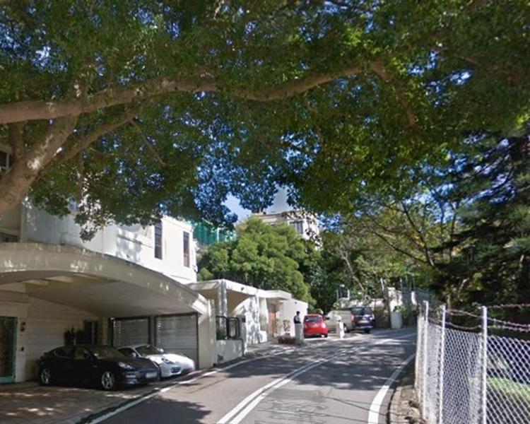 寿山村道两树倒塌 交通一度受阻逾句钟