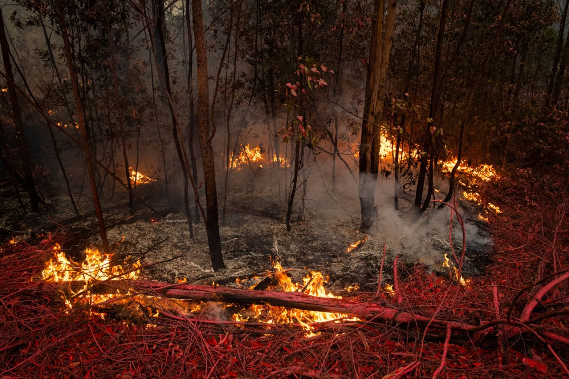 Australia's wildfire crisis: Key numbers behind the disaster