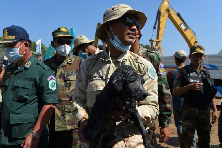 Cambodia building collapse death toll hits 36 as rescue called off