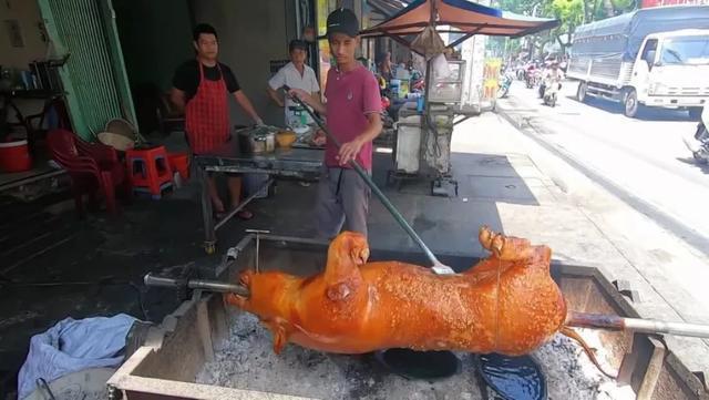 """去越南吃""""烤乳猪"""",1200元一只没忍住买了切开后:这谁敢吃?"""