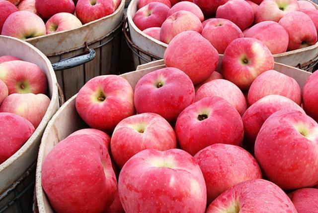 我国成为世界最大苹果生产国!专家说价格下降5元,网友:太好了