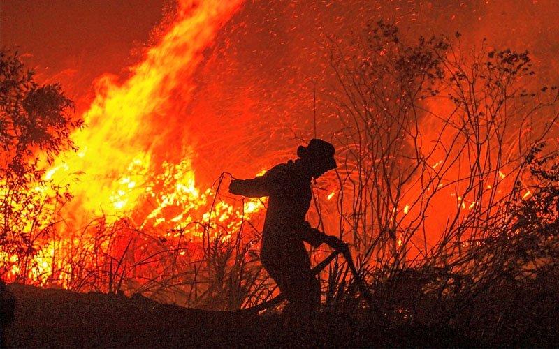 Cabinet okays firefighting mission to Australia