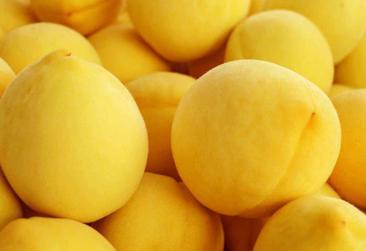 为什么大型水果市场里面没有黄桃?进来听一听果农怎么说