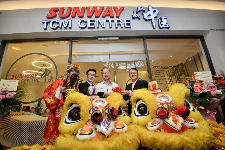 30% of Malaysians seek TCM