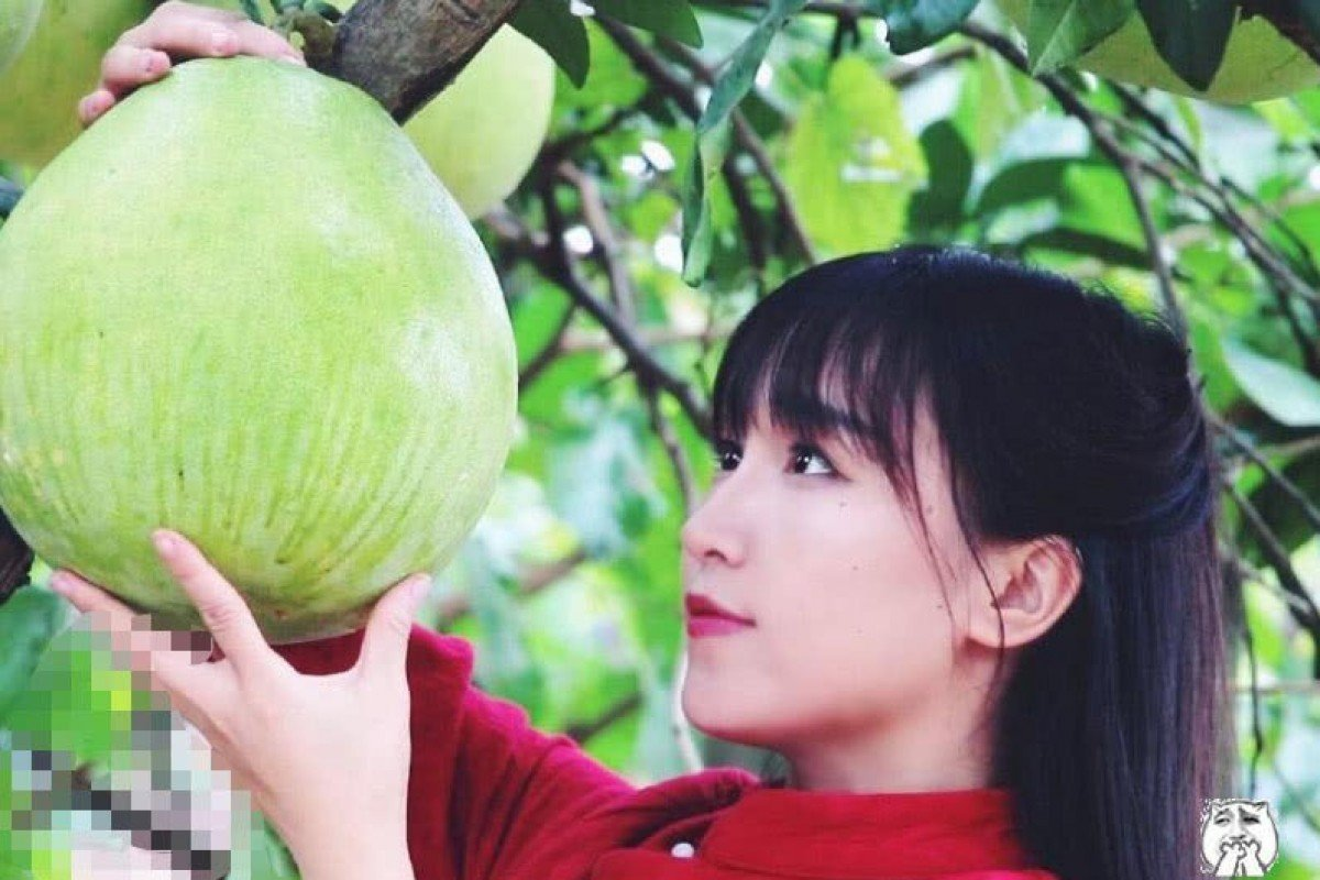 Chinese YouTube star Li Ziqi dismisses claim she makes US$24m a year