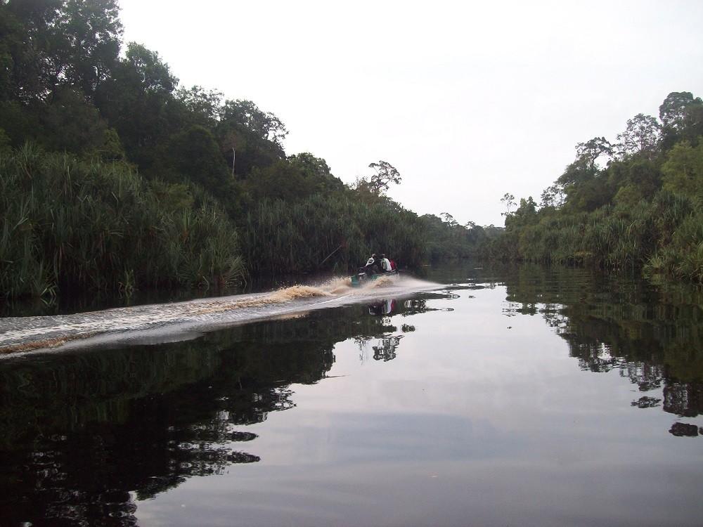 Two islands vanish, four more may soon sink, Walhi blames environmental problems