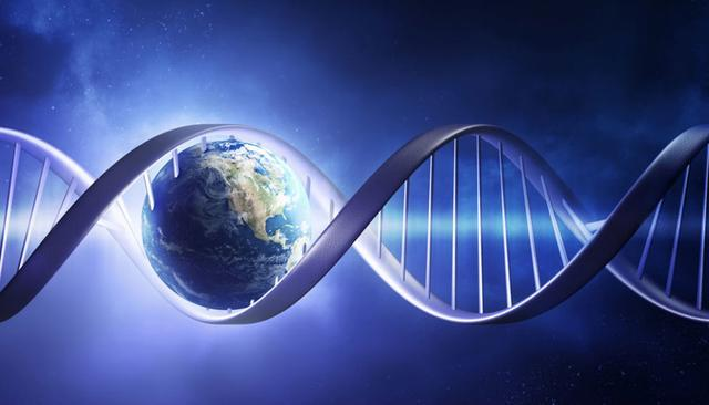 为什么地球生命都是碳基生命?其他星球上有硅基生命吗?