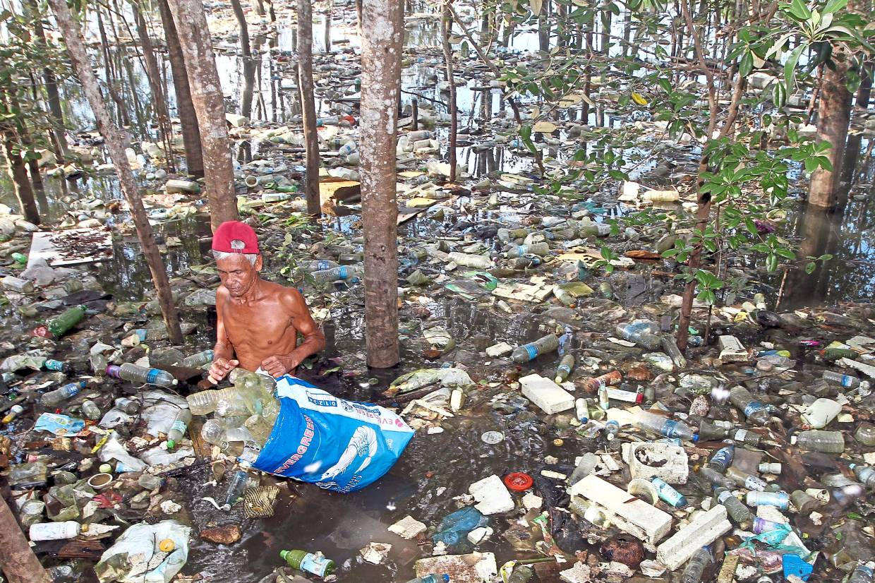 Advocate single-stream recycling to get more public participation