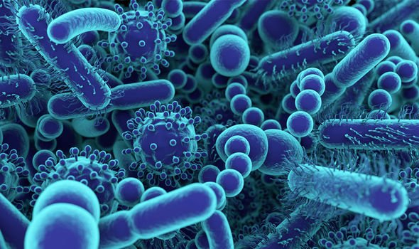 Coronavirus outbreak: US issues TRAVEL ALERT following spread of deadly virus